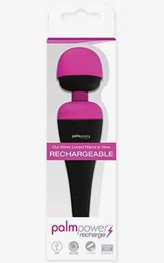 Magic Wand Massager PalmPower Rechargable