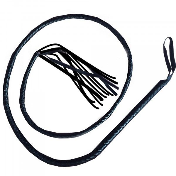 https://www.mshop.se/media/product/15a/long-whip-extra-long-64b.jpg